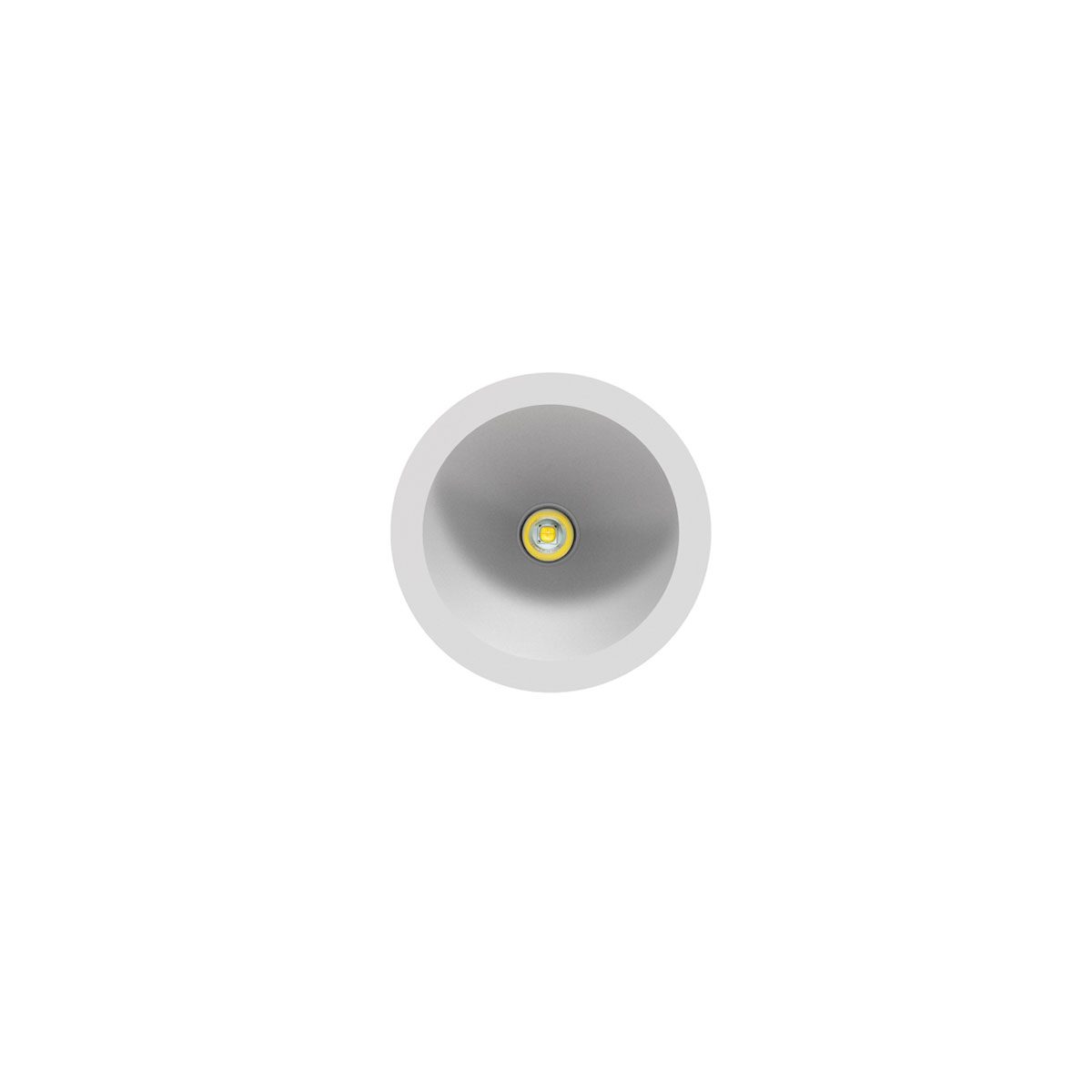 LOOP Indoor Downlight Lighting