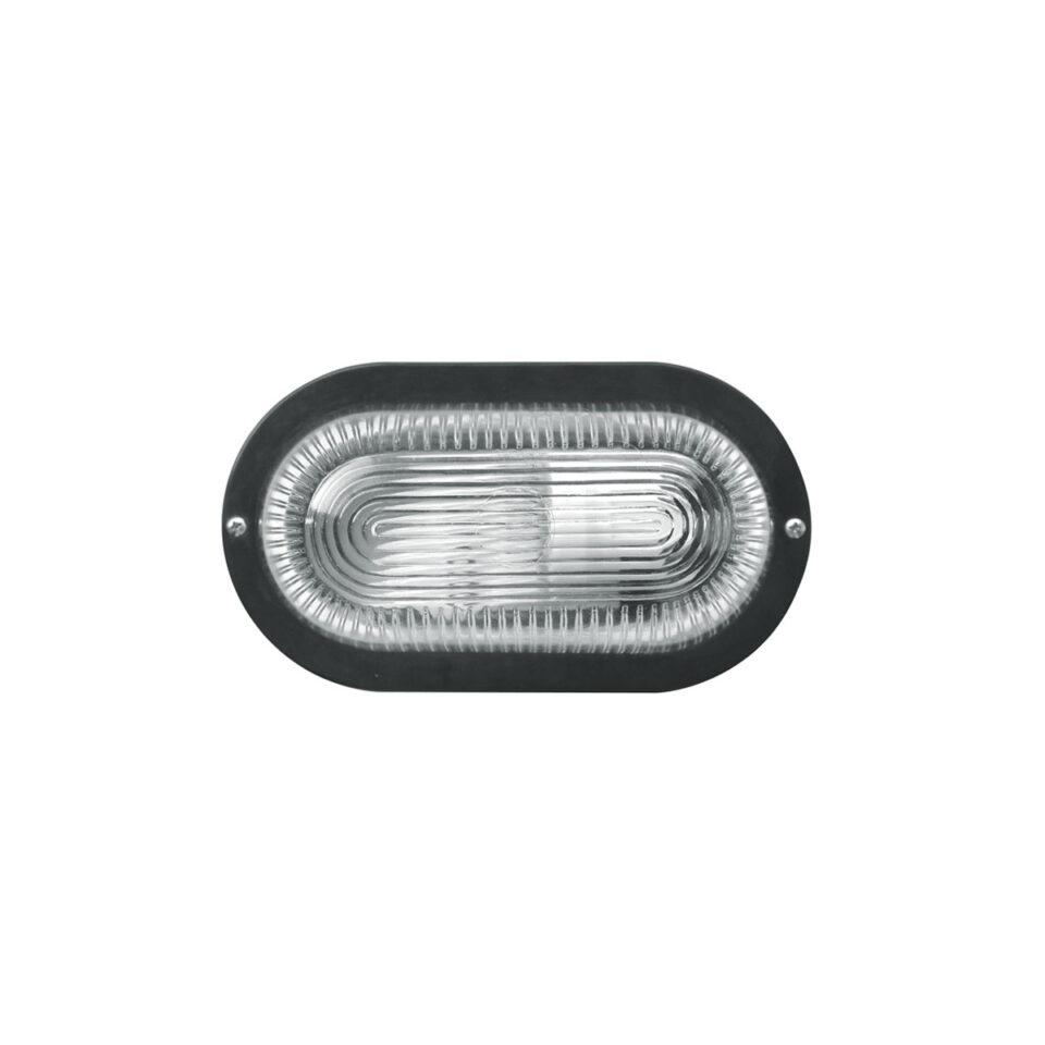 tortuga-iluminacion-3